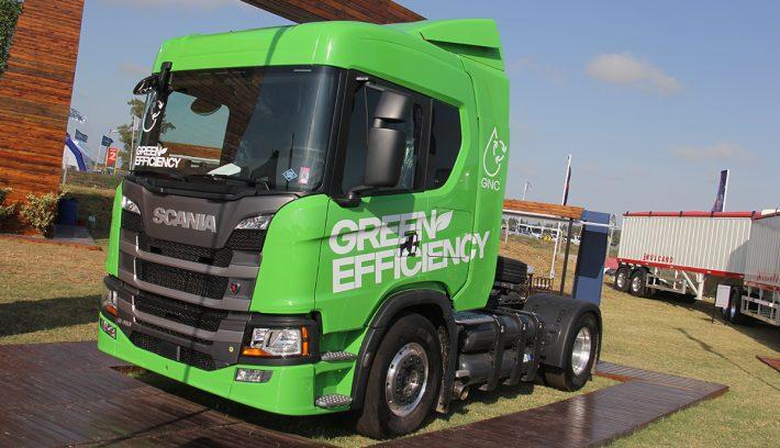 Green Efficiency foto